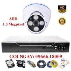 Bộ 1 Camera Dome Ricotech 1.3 Megapixel